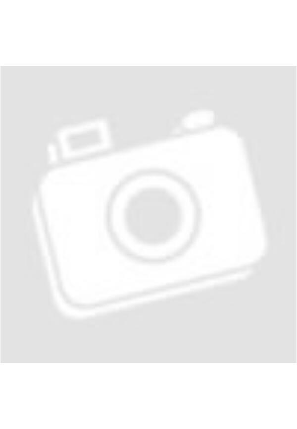 Neospotix Bolha és Kullancsriasztó Nyakörv Kutyáknak 75cm